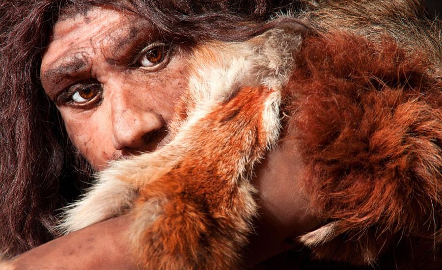 Dünyanın En Eski İnsan Türü Neandertaller Neden Yok Oldu