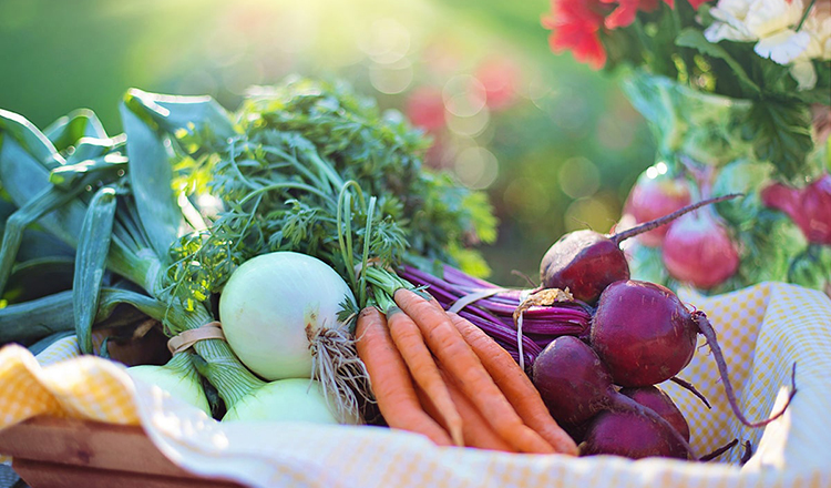 kış mevsiminde tüketilmesi gereken sebze ve meyveler