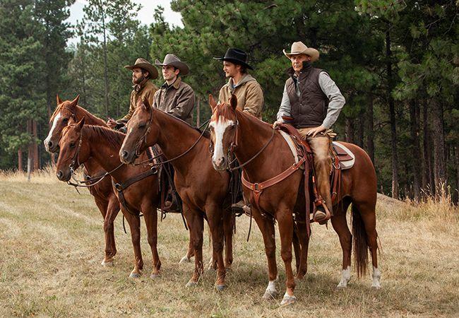 Netflix Western Dizileri : Yellowstone