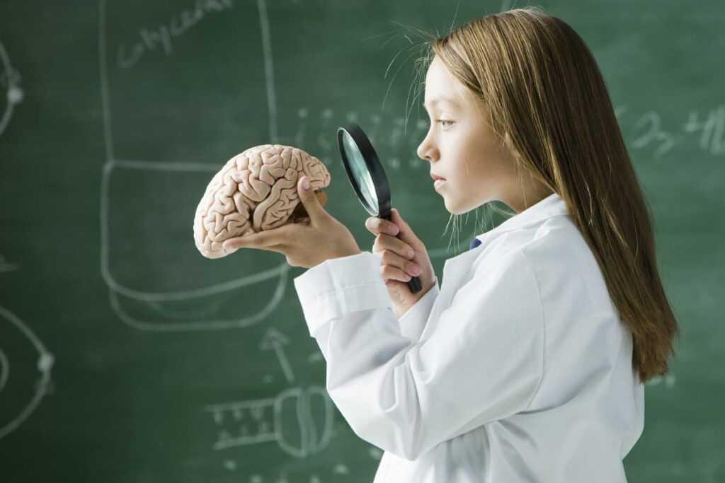 Hata Yapmak ve Beyin Gelişimi