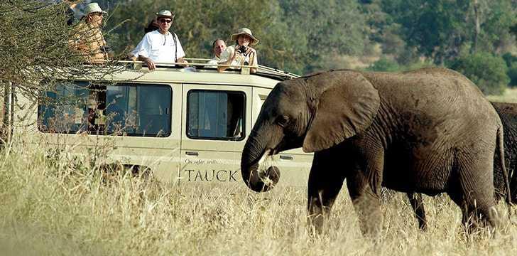 Kenya, Safari Etkinlikleri İçin Tercih Edilen 1 Numaralı Yerdir